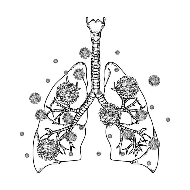 Иллюстрация легких с коронавирусом Premium векторы