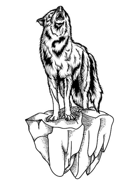 Волк ревет черно-белая иллюстрация Premium векторы