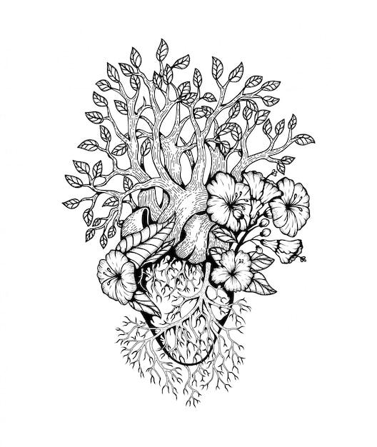 Иллюстрация анатомическое сердце с цветком Premium векторы
