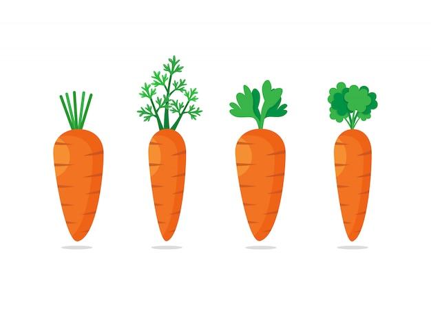 Набор из четырех морковь с зелеными листьями. сладкий овощ, плоский дизайн значок иллюстрации Premium векторы