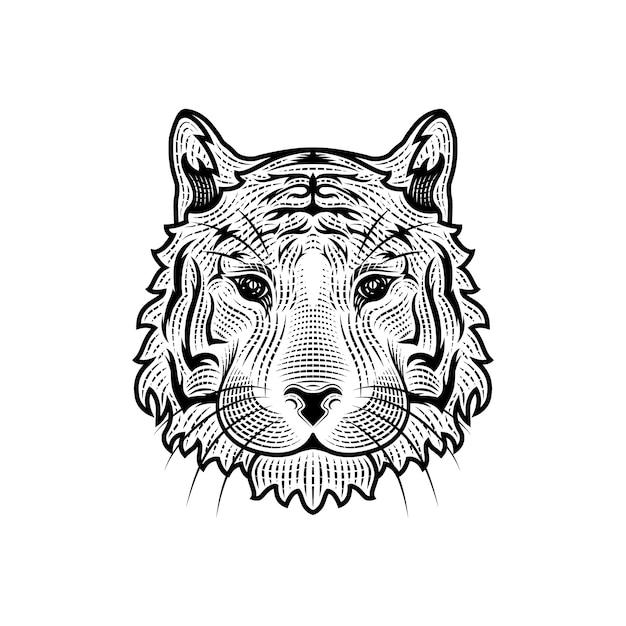 Голова тигра иллюстрации Premium векторы