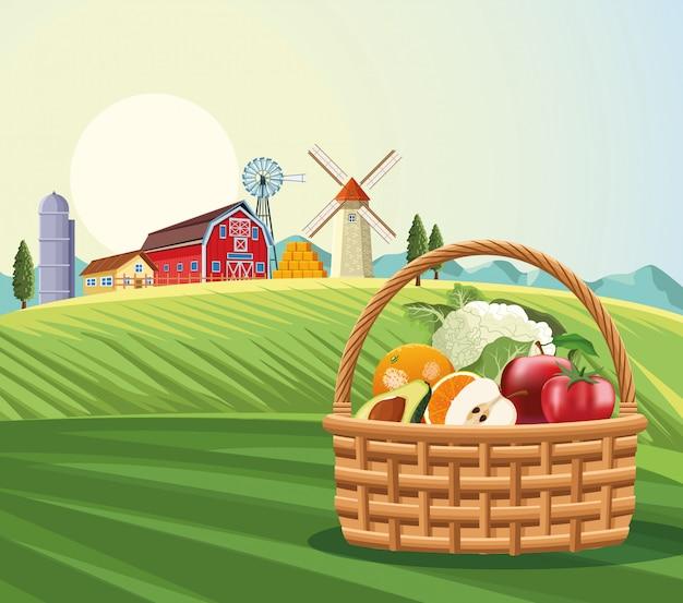 バスケットの果物や野菜 Premiumベクター
