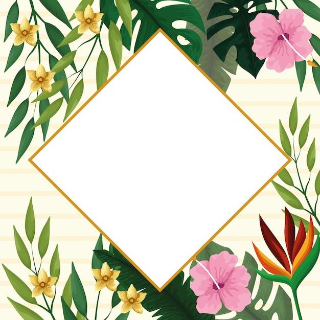 熱帯の花と夏のダイヤモンドフレーム 無料ベクター