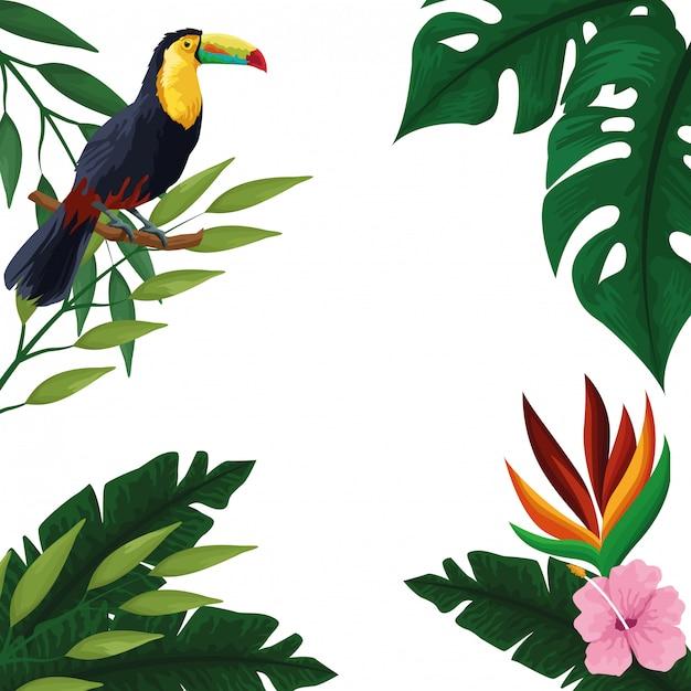 夏の熱帯空白カードフレーム 無料ベクター