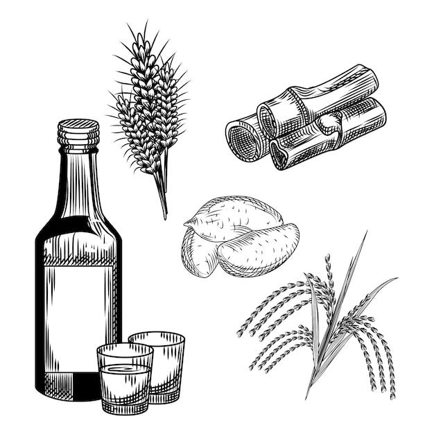 Набор соджу. корейский традиционный алкогольный напиток. пшеница, батат, рис, стебель бамбука, рюмка, бутылка водки. Premium векторы