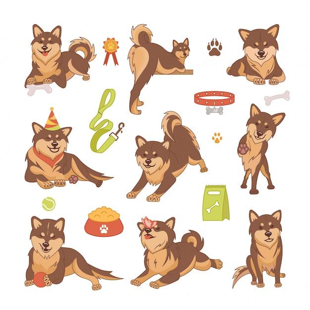 柴犬の犬のセット Premiumベクター