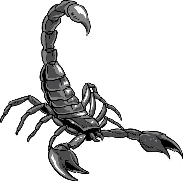 картинка белого скорпиона подножия можно