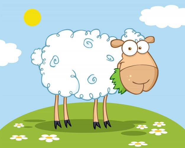 丘の上で草を食べる白い羊のキャラクター Premiumベクター