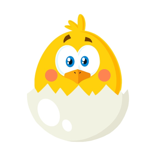卵の殻から黄色のひよこの漫画のキャラクター。ベクトルイラストフラット分離 Premiumベクター