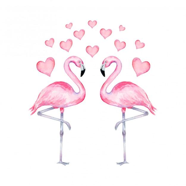 心に恋して現実的なフラミンゴの水彩イラスト。バレンタインデーのフラミンゴ。 Premiumベクター