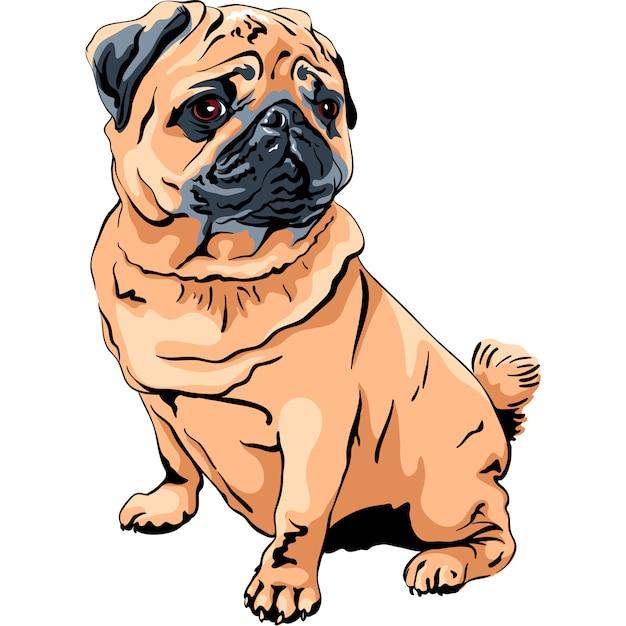 Милая собака породы мопс Premium векторы