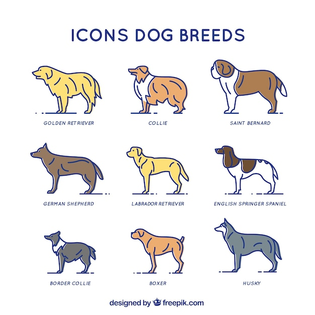 犬の品種 無料ベクター