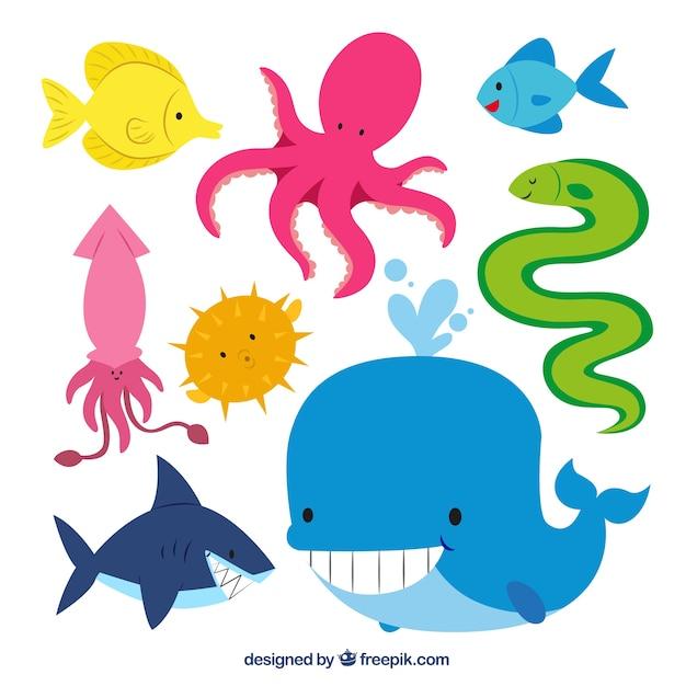 かわいい海の動物 無料ベクター