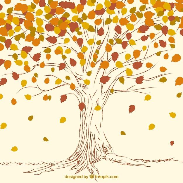 узнать картинка дерева с опавшими листьями перед отлетом