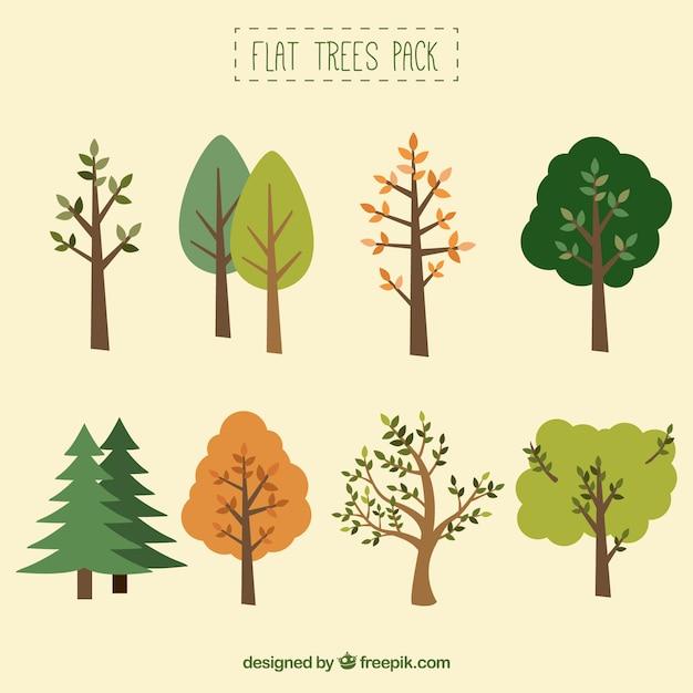 平らな木のコレクション 無料ベクター