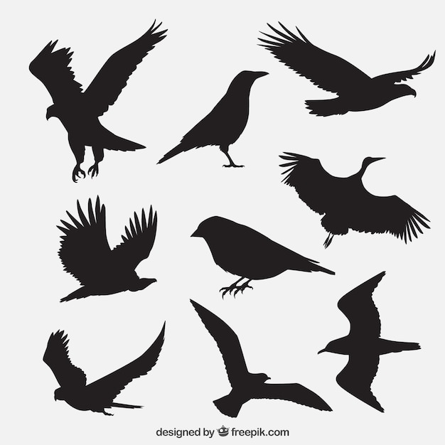 鳥のシルエットのグループ 無料ベクター