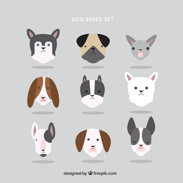 フラットなデザインの犬の品種のコレクション 無料ベクター