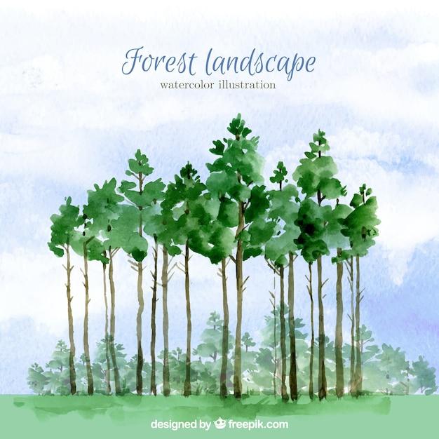 Акварельный фон высокие деревья Бесплатные векторы