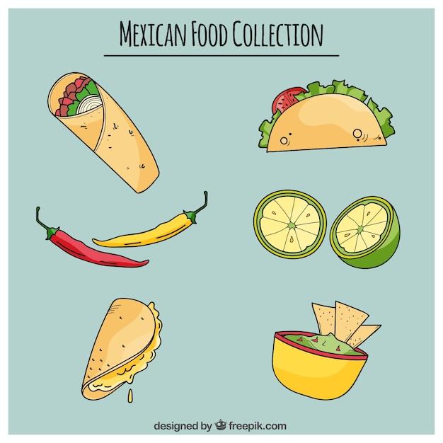 ハンド美味しいメキシコ料理を描か 無料ベクター