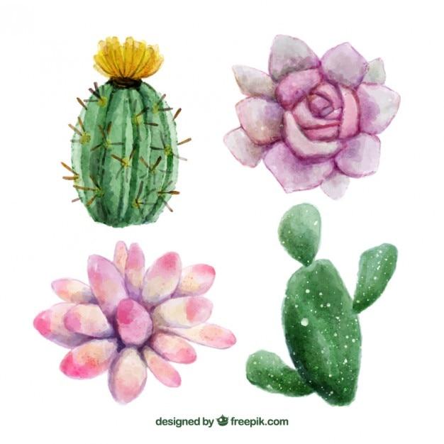 Акварель ручной росписью цветы и кактус Бесплатные векторы