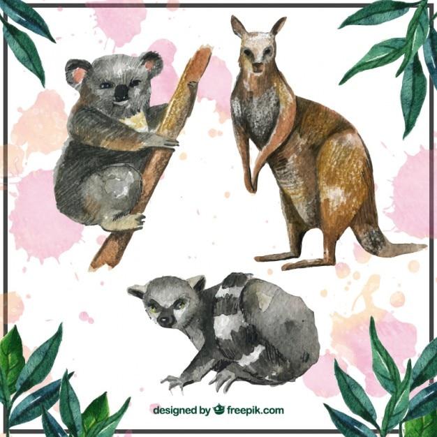 Коллекция австралийских животных Бесплатные векторы