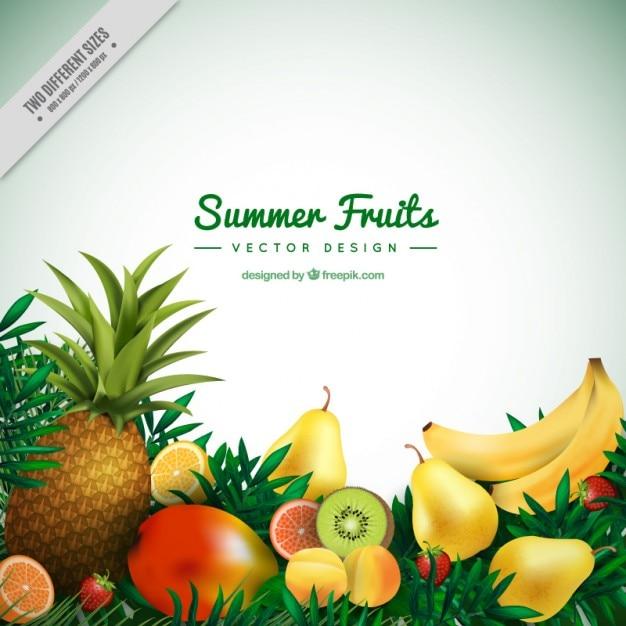 夏のトロピカルフルーツの背景 無料ベクター