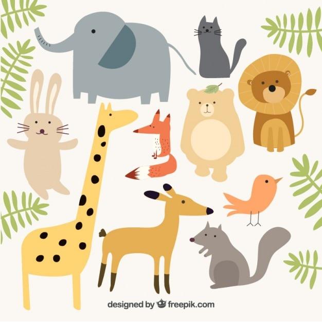 Животные, животный мир картинки вектор