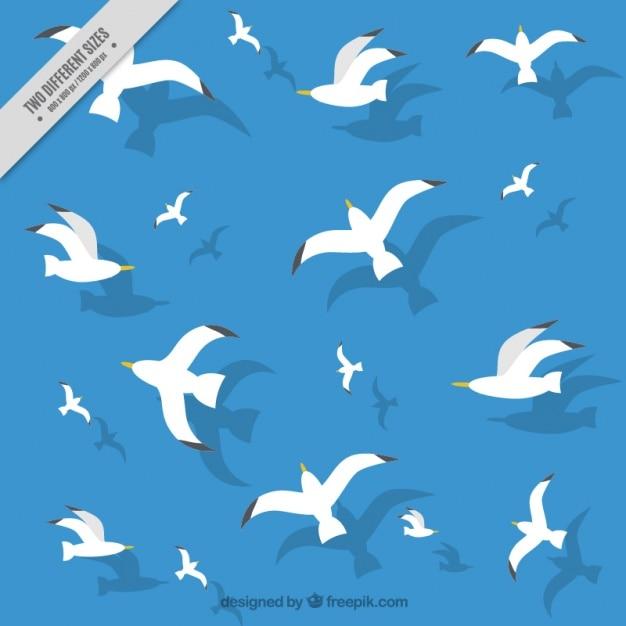 Голубой фон с чайками Бесплатные векторы