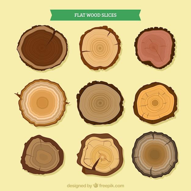 木の異なる種類の木材スライス 無料ベクター