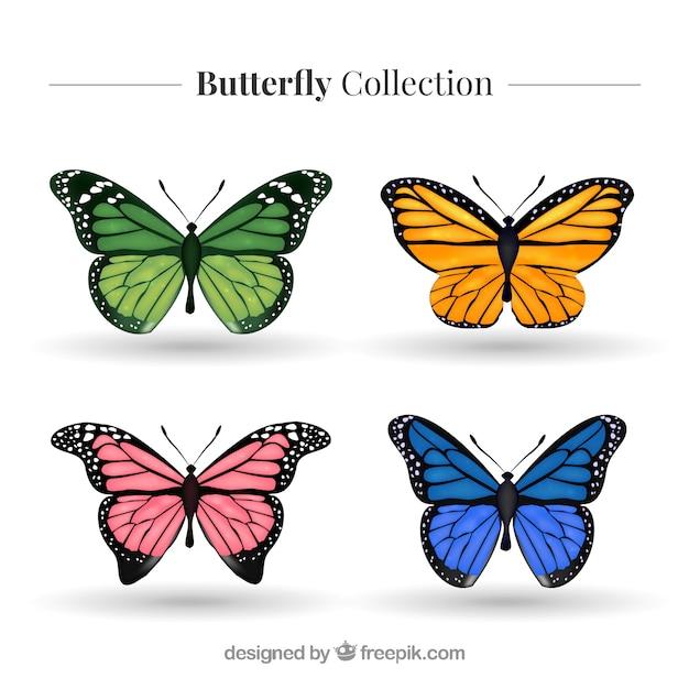 現実的な着色された蝶のパック 無料ベクター