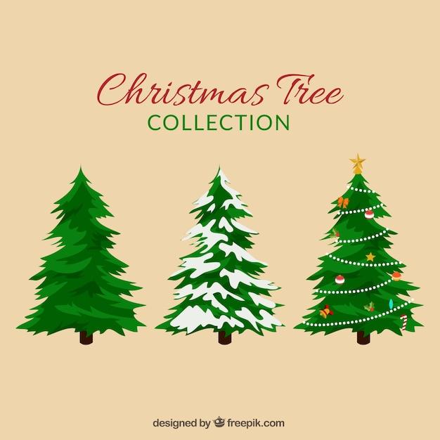 クリスマスのモミの木には設定します 無料ベクター
