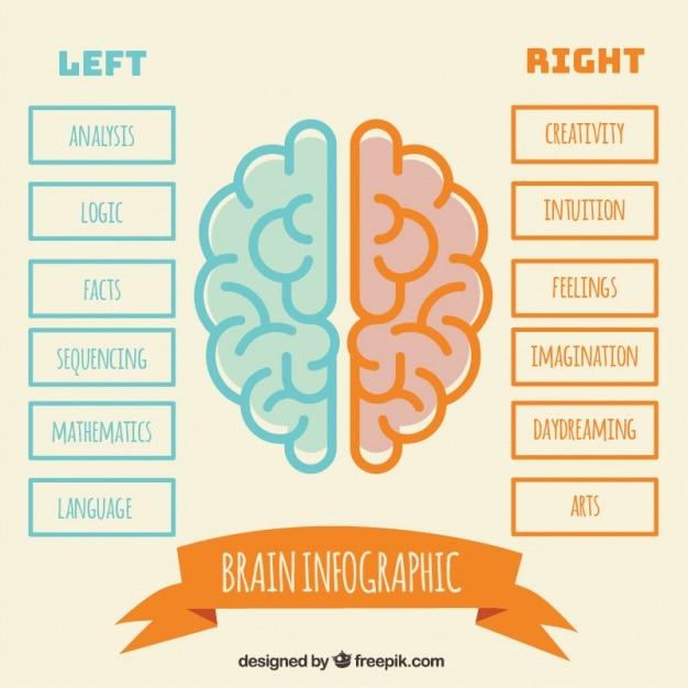 Минималистский инфографики мозга человека в плоском дизайне Бесплатные векторы
