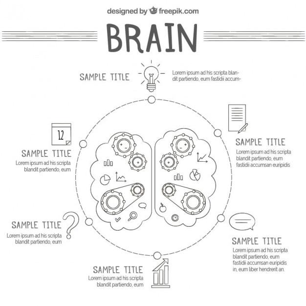 Круглый инфографики человеческого мозга с шестернями Premium векторы
