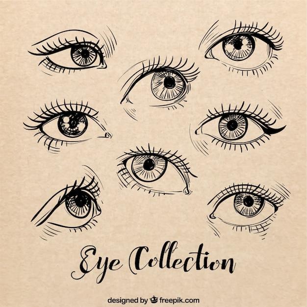 Эскизы женских глаз установить Бесплатные векторы