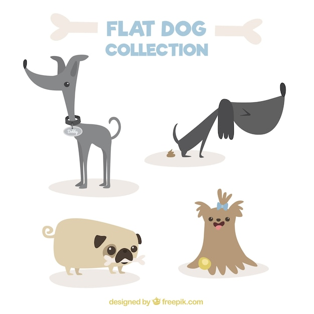 フラットなデザインの素晴らしい犬の品種 無料ベクター