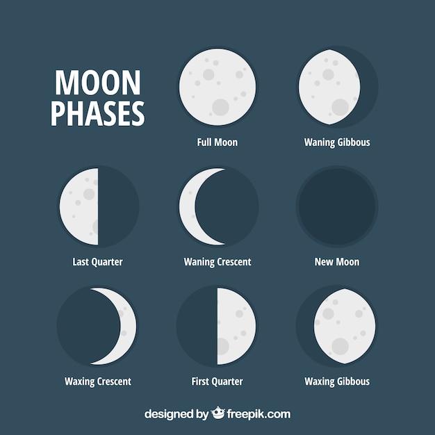 平らな月の相のセット 無料ベクター