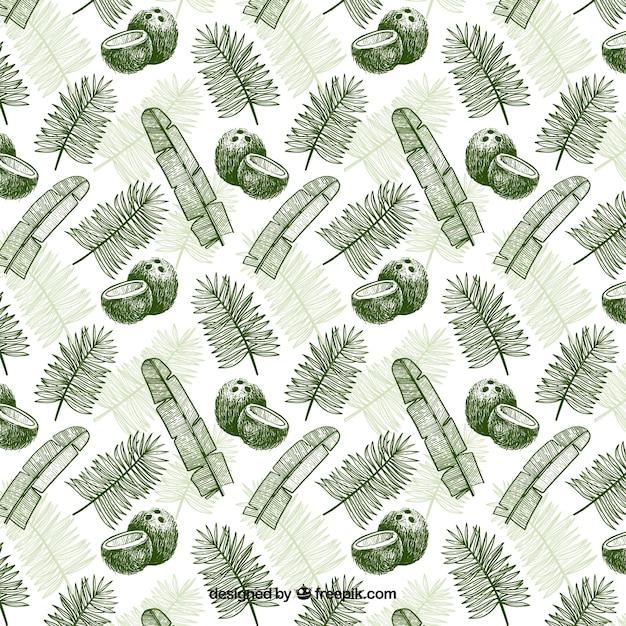 ココナッツとヤシの葉で手描きのパターン 無料ベクター