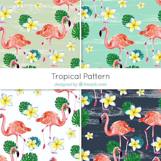 Декоративные рисунки фламинго и акварельных цветов Бесплатные векторы