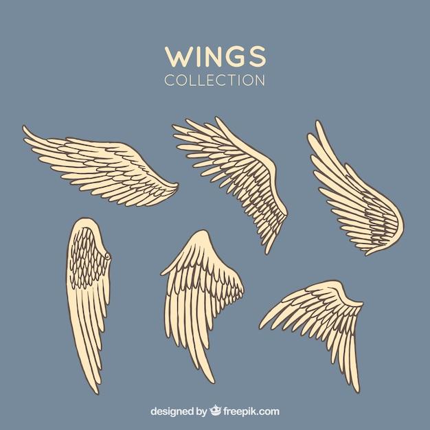 手描きの翼のセット 無料ベクター