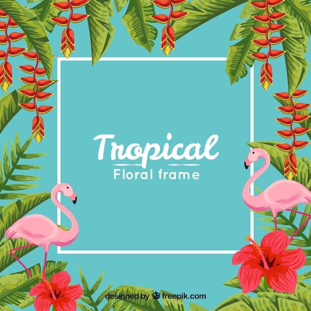 葉とフラミンゴと熱帯のフレームの背景 無料ベクター