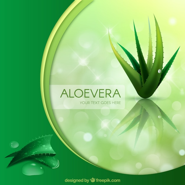 緑の背景とアロエベラ 無料ベクター