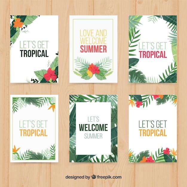 熱帯植物カードコレクション 無料ベクター