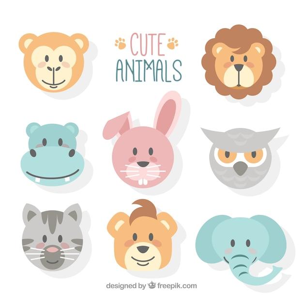 かわいい動物の顔がフラットなデザイン 無料ベクター