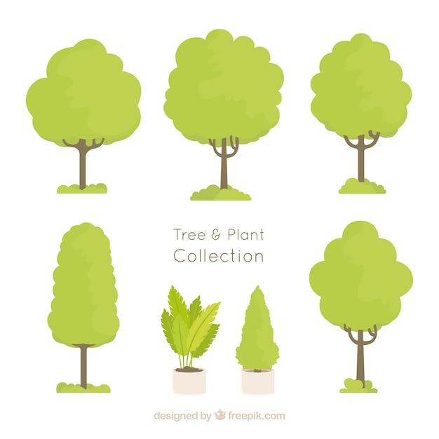 монахи наносили условное обозначение дерево картинка монтессори-методе является
