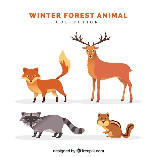 フラットな冬の動物コレクション 無料ベクター