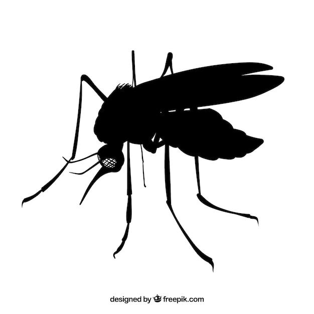 蚊側 無料ベクター
