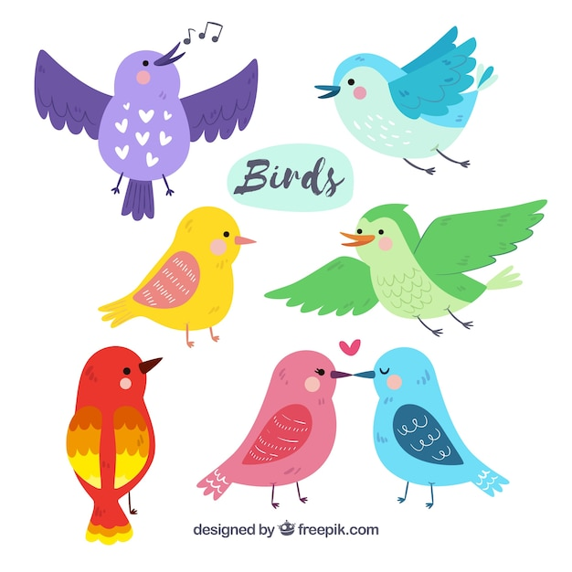 Коллекция рисованной птицы Бесплатные векторы