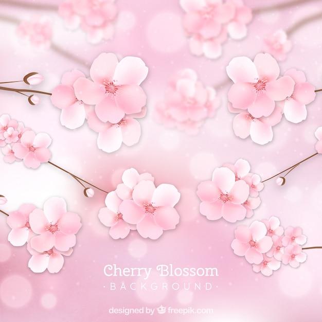 Цвет вишни в реалистичном стиле Бесплатные векторы