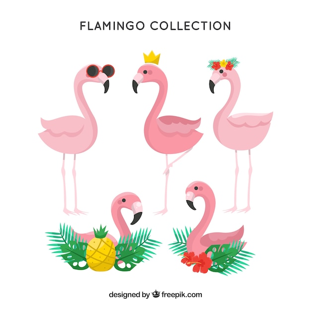 かわいいフラミンゴコレクションの手描きスタイル 無料ベクター