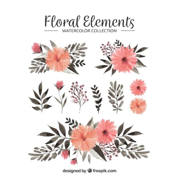 Коллекция цветочных элементов в акварельном стиле Бесплатные векторы